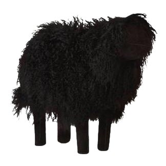 Large Black Tibetan Lamb Sheep For Sale