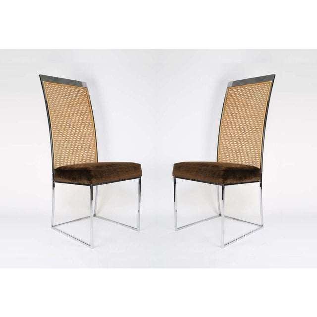 Six High Back Cane Dining Chairs by Milo Baughman for Thayer Coggin For Sale In Dallas - Image 6 of 11