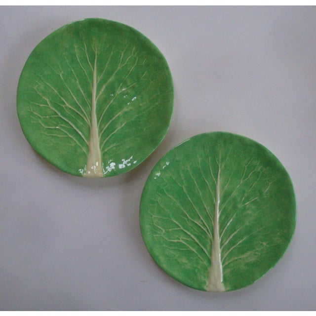 "Dodie Thayer Lettuce Ware Cabbage Leaf 10"" Dinner Plates, a Pair For Sale In Richmond - Image 6 of 6"