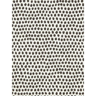 Scalamandre Dot Weave, Charcoal Fabric For Sale