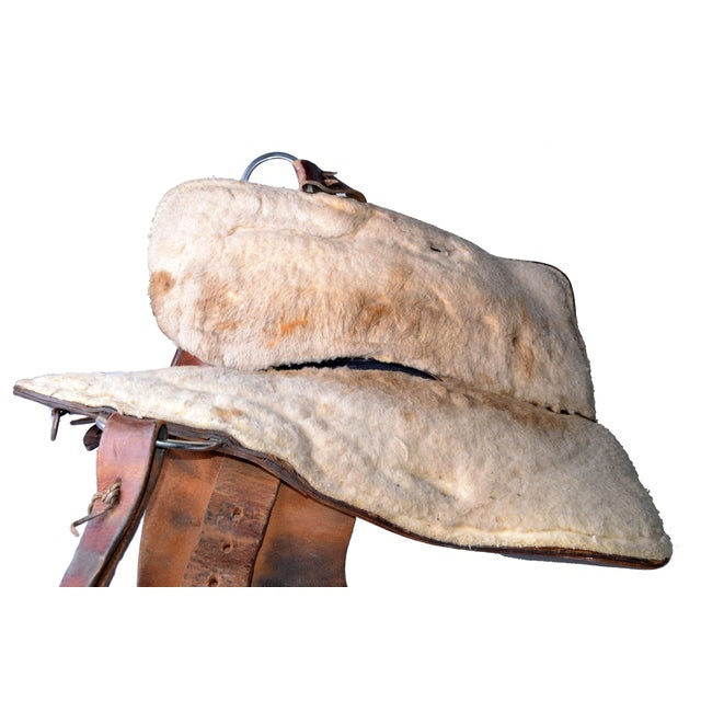 Animal Skin Ralide Leather Horse Saddle For Sale - Image 7 of 10