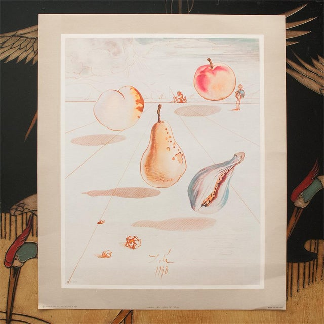 1955 Dali Fruits Original Period Lithograph From the Mrs. Albert D. Lasker Collection For Sale - Image 12 of 13