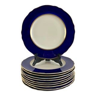 Steubenville Blue Gold Gilt Ivory China Dinner Plates - S/10 For Sale