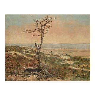 Coastal Landscape W/ Lone Tree For Sale