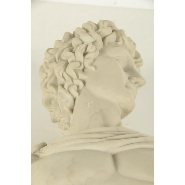 2000 - 2009 Contemporary Resin Bust After Apollo Belvedere For Sale - Image 5 of 7