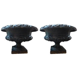19th Century French Neoclassical Style Cast Iron Urns - a Pair