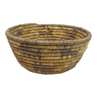 20th Century Native American Zoomorphic Basket For Sale