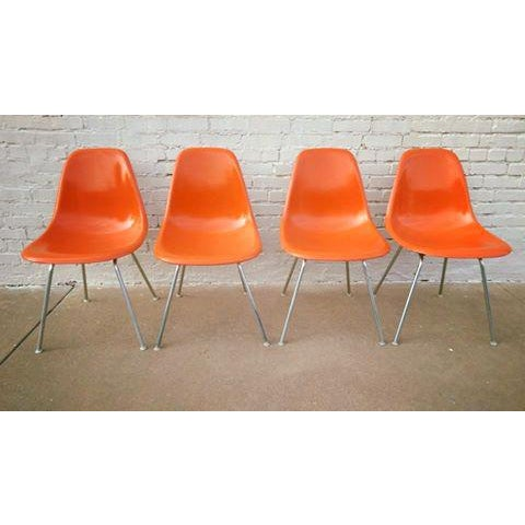 Mid-Century Herman Miller Shell Chairs - Set of 4 - Image 2 of 3