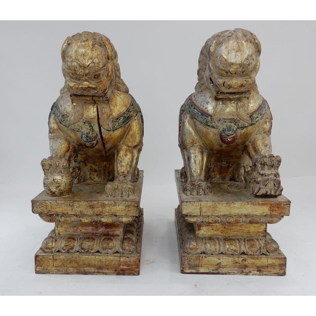 Antique Qing Dynasty Temple Foo Dogs - A Pair For Sale - Image 4 of 11