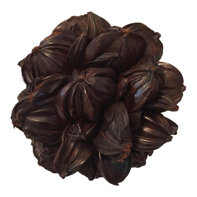 Seed Pod Sphere Decorative Object - Image 1 of 4
