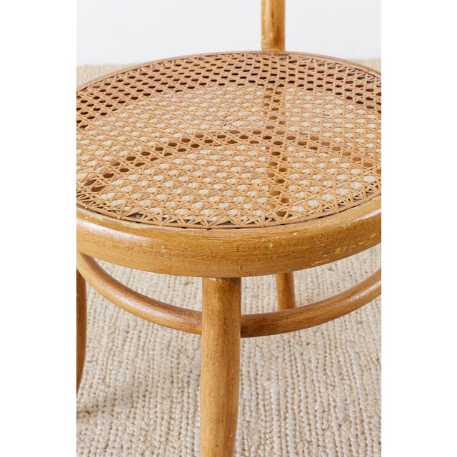 Pair of J. And J. Kohn Austrian Bentwood and Cane Chairs For Sale - Image 11 of 13