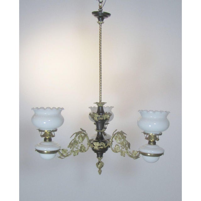 Gilt bronze grapevine arms and a contrasting patinated stem. Original glass. Please inquire about adjusting the height....