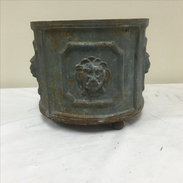Stunning cast iron planter with lions heads in relief on ball feet. #SNR