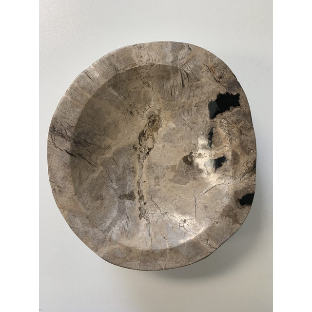 Petrified Wood Catchall Bowl For Sale - Image 9 of 10