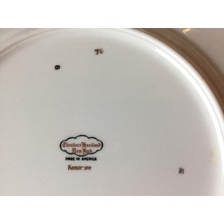 Vintage Haviland New York Kenmore China Plates - Set of 10 Preview