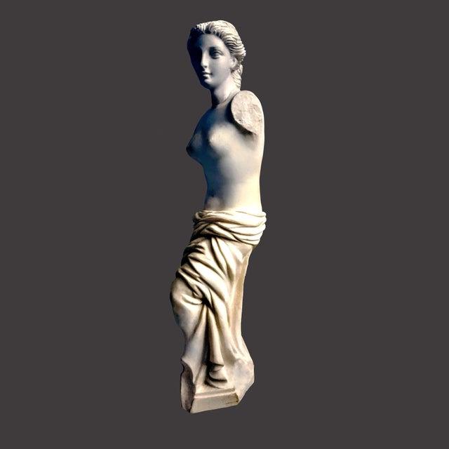 Alabaster Venus De Milo Statue For Sale In Palm Springs - Image 6 of 7