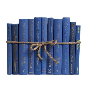 Modern Blue Jay Colorpak : Decorative Books in Medium Blue Shades For Sale