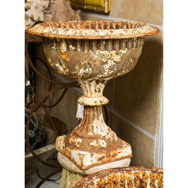 White 19th Century Iron Garden Urns - a Pair For Sale - Image 8 of 10