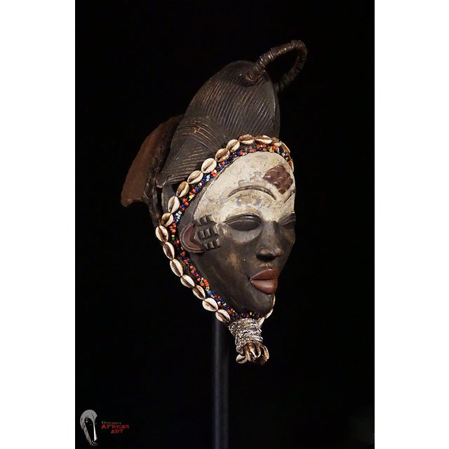 Punu African Tribal Mask - Image 9 of 10