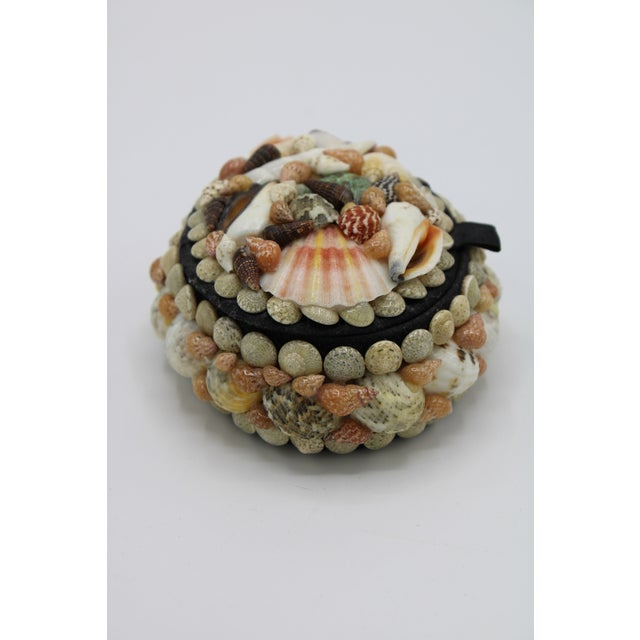 Mid 20th Century Mid 20th Century Vintage Organic Seashell Jewelry Treasure Box For Sale - Image 5 of 12