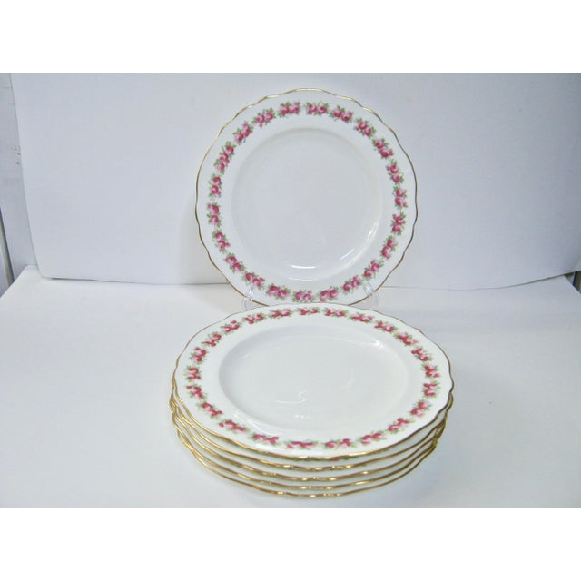 Antique Cauldon England Rose Border Gold Trim Plates - Set of 6 For Sale In Providence - Image 6 of 6