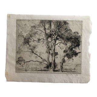 """1924 Vintage Alfred Hutty """"Sycamores"""" Etching Print For Sale"""