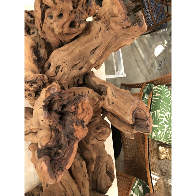 Boho Chic Vintage Palm Beach Driftwood Cypress Coffee Cocktail Table For Sale - Image 3 of 13