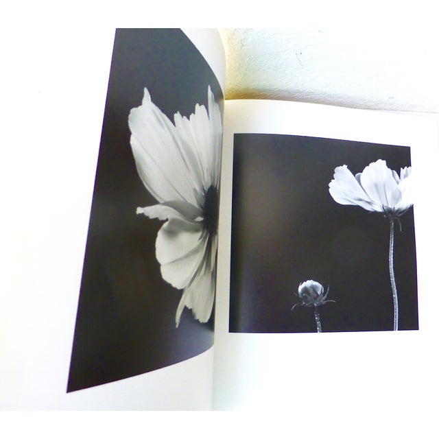 White Hana, Yasuhiro Ishimoto Book For Sale - Image 8 of 11