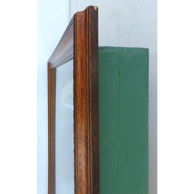 Vintage Polo Memorabilia Shadow Box For Sale - Image 10 of 10