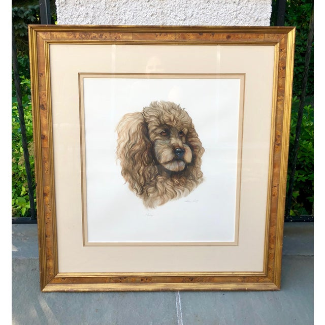 Vintage Artist Rendered Poodle Portrait Drawing in Burl Walnut Frame For Sale - Image 10 of 10