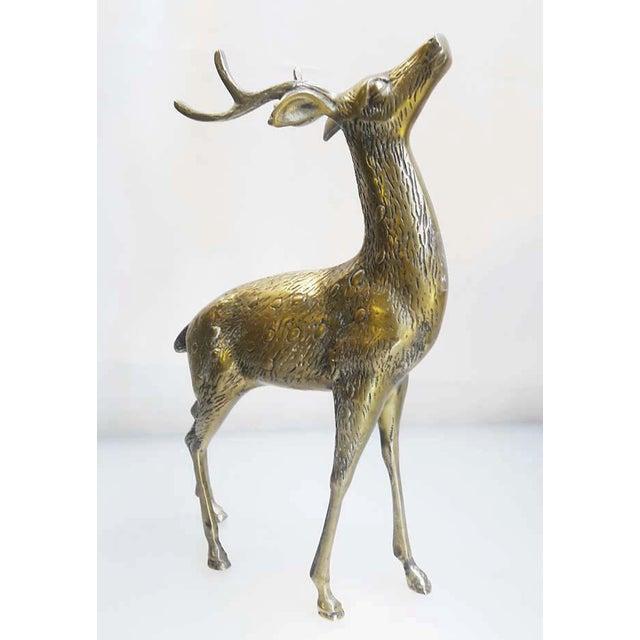 Large Vintage Brass Deers - A Pair - Image 4 of 6