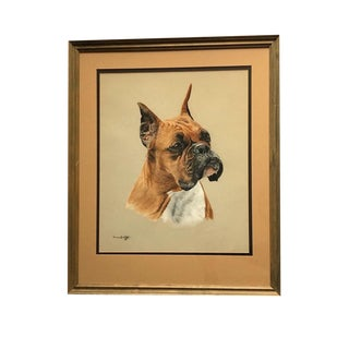 """Vintage """"Boxer"""" Pastel Drawing on Canson Paper by Anne Wolff For Sale"""