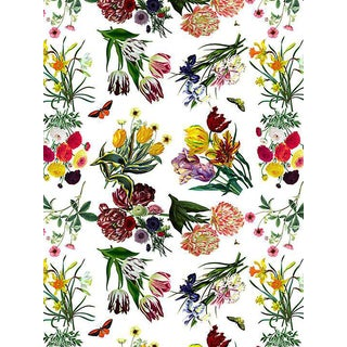 Sample, Scalamandre Nicolette Mayer for Scalamandre Flora & Fauna, White Wallpaper For Sale