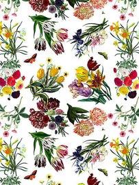 Image of Scalamandre Wallpaper