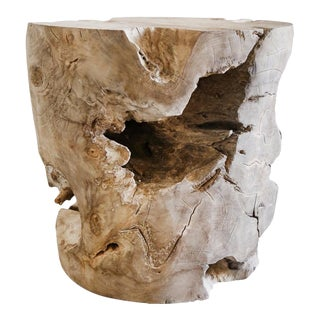 Organic Modern Ash Grey Teak Root Cone Side Table For Sale