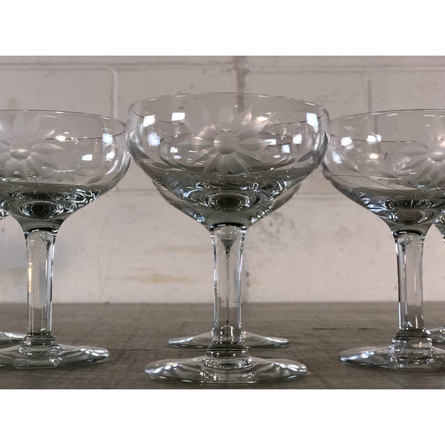 1950s Vintage 1950s Floral Etched Glass Coupes, Set of 6 For Sale - Image 5 of 7