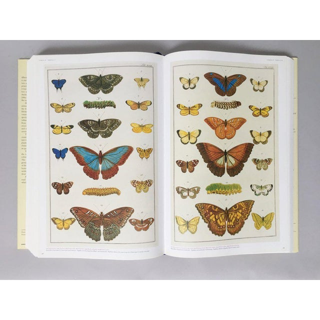 Taschen 'Cabinet of Natural Curiosities' Oversized Coffee Table Book For Sale - Image 4 of 11