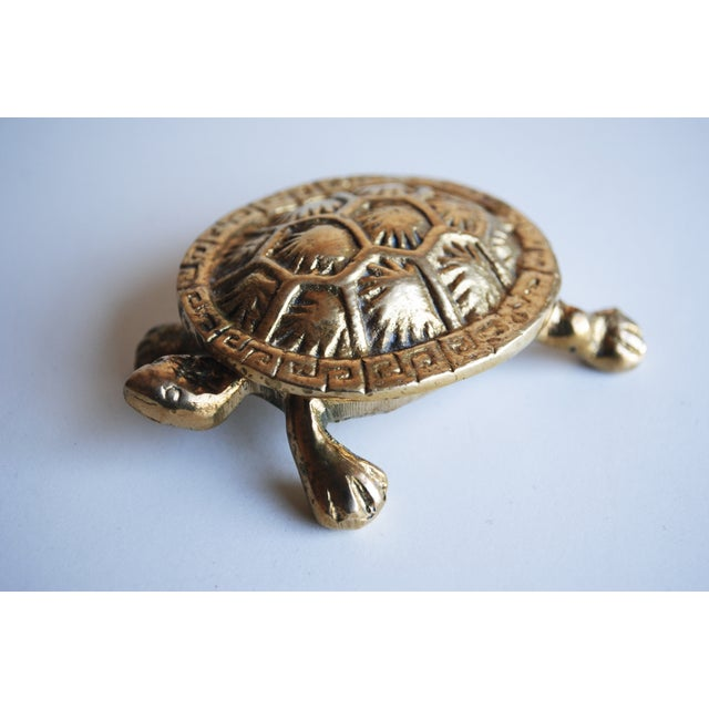 Small Brass Turtle Box - Image 2 of 5