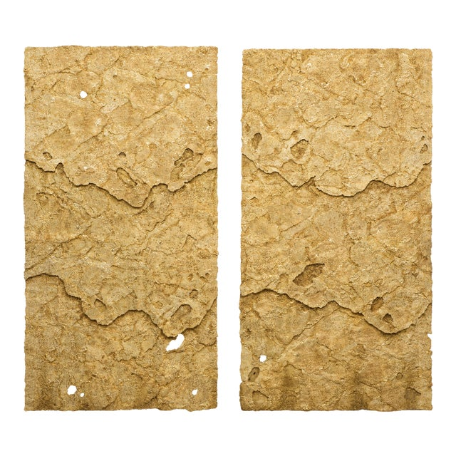 Sophie Coryndon, Dossel Diptych, Uk, 2018 For Sale