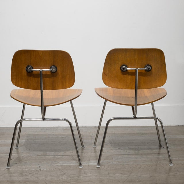 Early Ray and Charles Eames for Herman Miller Dcm Chairs, Circa 1950- Price Is Per Chair For Sale - Image 9 of 13