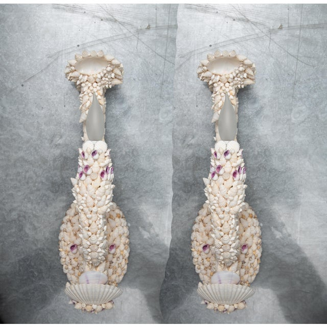 Shell Art Sconces - a Pair For Sale - Image 9 of 9