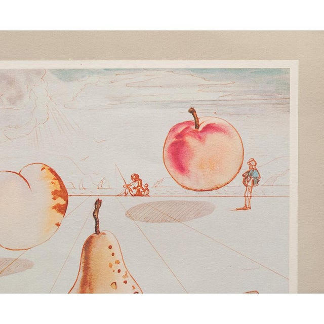1955 Dali Fruits Original Period Lithograph From the Mrs. Albert D. Lasker Collection For Sale In Dallas - Image 6 of 13