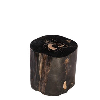 Organic Modern Petrified Wood Stool/Accent Table For Sale