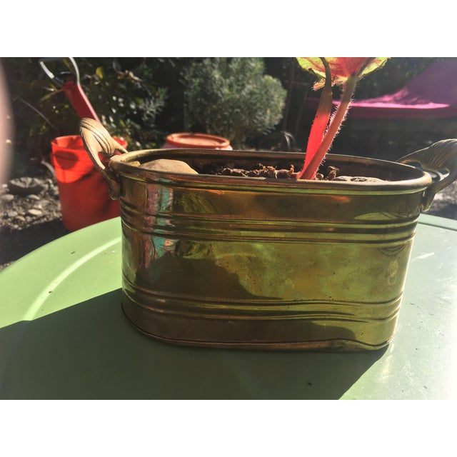 1960s 1960s Hollywood Regency Brass Oblong Planter With Shell Detail and Handles For Sale - Image 5 of 10