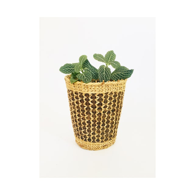 A lovely large vintage basket with two tones of natural woven fibers. Perfect for keeping a favorite plant.