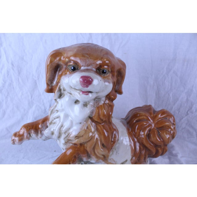 Sturdy ceramic King Charles Spaniard dog figure. Perfect for a lively garden
