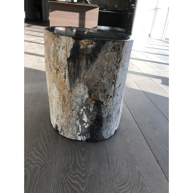Contemporary Restoration Hardware Petrified Fossilized Wood Coffee Table Stool For Sale - Image 3 of 7