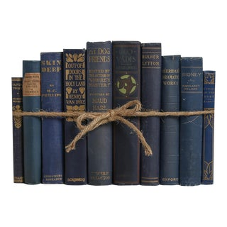 Antique Denim ColorPak - Decorative Books in Shades of Blue For Sale