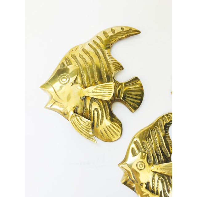 Boho Chic Vintage Brass Angel Fish Wall Hangings - Set of 3 For Sale - Image 3 of 6
