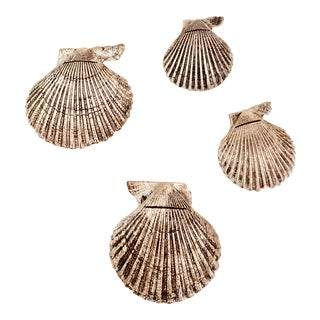 Silver Plated Real Shell Card Holders - Set of 4 For Sale